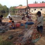 Fishing group -in action , Chroy Svay commune