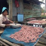 Fish- processer in action , Chroy Svay commune