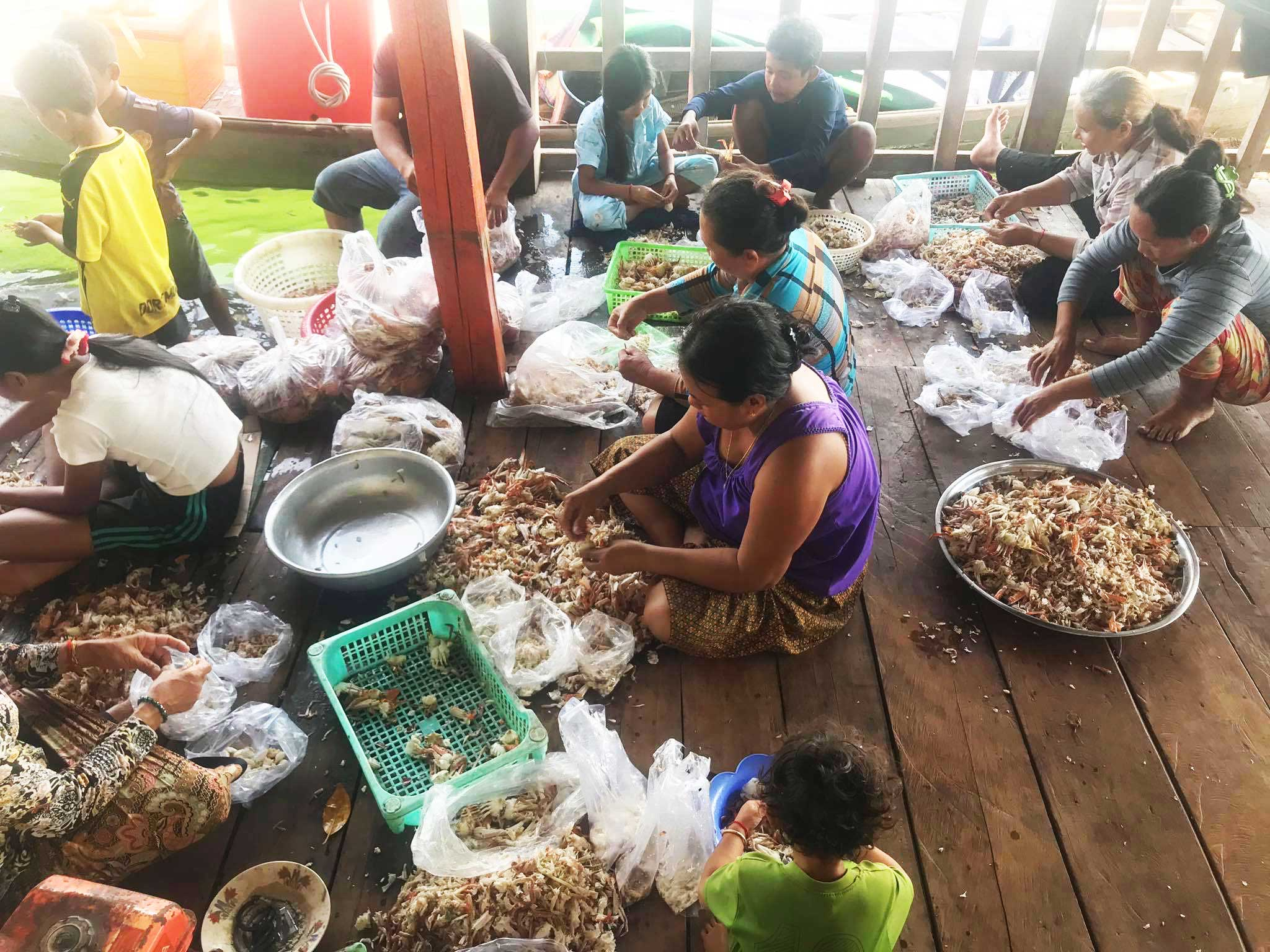 Fish- processing in action , Chroy Svay commune